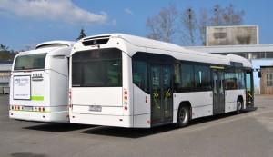 Autobuse će se testirati na dvjema redovnim linijama